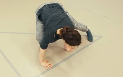Nieuw: Physical Dynamics